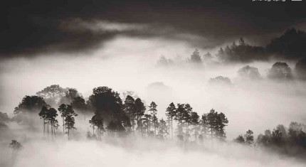 Thirlmere Lake – Black and White inversion photograph - image